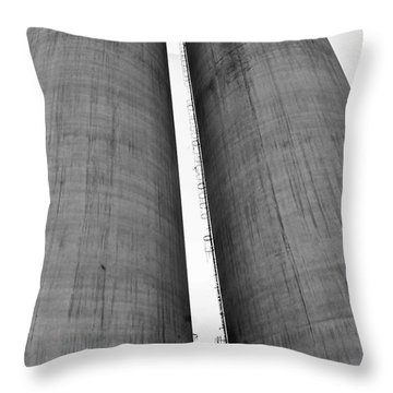 Throw Pillow featuring the photograph Abandoned Twins by Lynda Dawson-Youngclaus