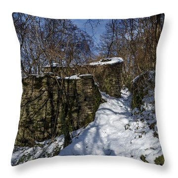 Throw Pillow featuring the photograph Abandoned Villages On Winter Time - Inverno Nei Paesi Abbandonati 10 by Enrico Pelos