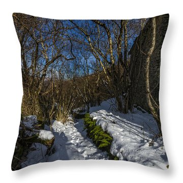 Throw Pillow featuring the photograph Abandoned Villages On Winter Time - Inverno Nei Paesi Abbandonati 15 by Enrico Pelos