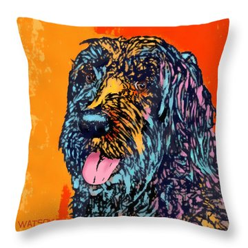 Abbey 2 Throw Pillow by Marlene Watson
