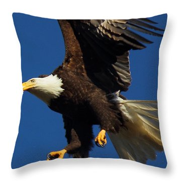 Aborted Landing Throw Pillow by Randy Hall