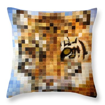 About 400 Sumatran Tigers Throw Pillow by Charlie Baird