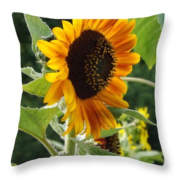 About Face Throw Pillow