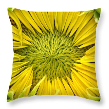 Throw Pillow featuring the photograph About To Be A Sunflower by Kenny Glotfelty