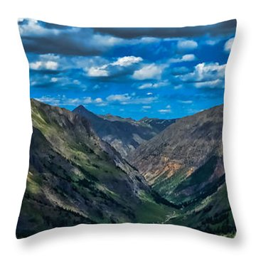 Throw Pillow featuring the photograph Above It All by Don Schwartz