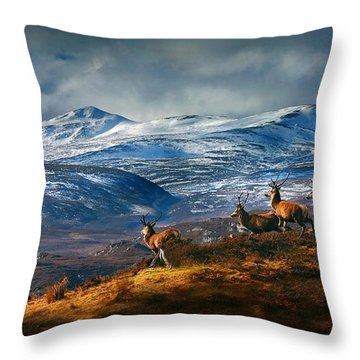 Above Strathglass Throw Pillow