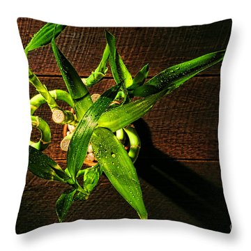 Above The Bamboo Throw Pillow