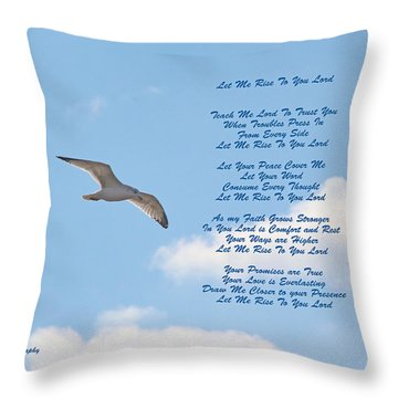 Above The Clouds Throw Pillow by Lorna Rogers Photography