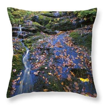 Abruzzo National Park Throw Pillow by George Atsametakis