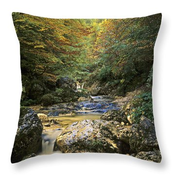 Abruzzo National Park In Italy Throw Pillow by George Atsametakis