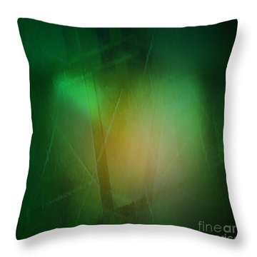 Abstract 1005 Throw Pillow by John Krakora