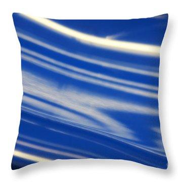 Abstract 14 Throw Pillow by Tony Cordoza