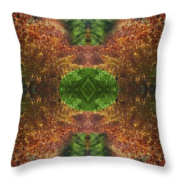 Abstract 164 Throw Pillow by J D Owen