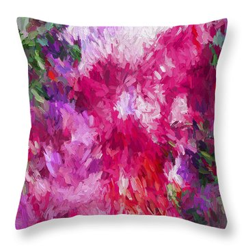 Abstract Artwork 17 Throw Pillow