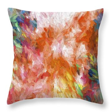 Abstract Artwork 19 Throw Pillow