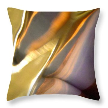Abstract 3565 Throw Pillow by Stephanie Moore