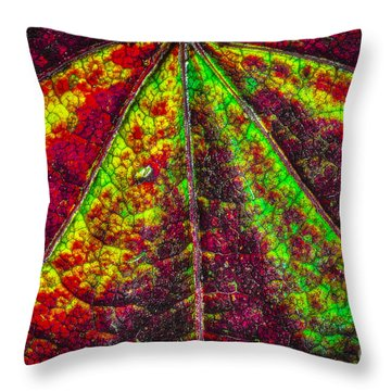 Throw Pillow featuring the photograph Abstract 482 by Mitch Shindelbower