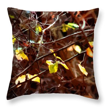 Abstract 88 Throw Pillow by Timothy Bulone