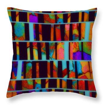abstract - art- Color Pop  Throw Pillow by Ann Powell