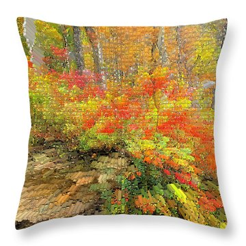 Abstract Autumn  Throw Pillow by Lorna Rogers Photography