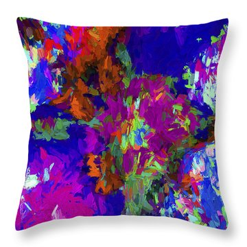 Abstract Series B2 Throw Pillow