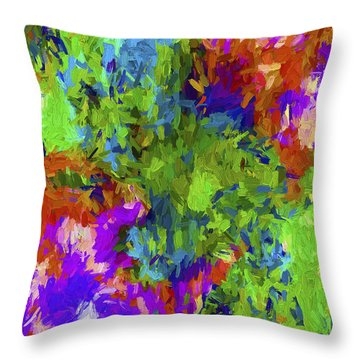 Abstract Series B3 Throw Pillow