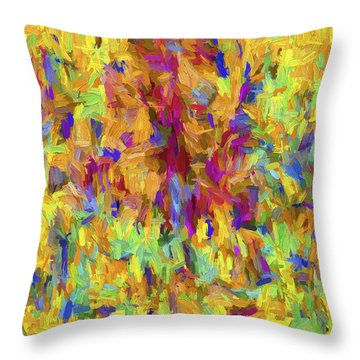 Abstract Series B9 Throw Pillow