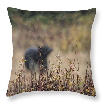 Abstract Black Bear Throw Pillow