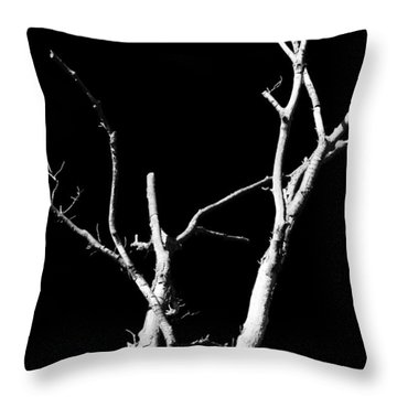 Abstract Branches Throw Pillow by Maggy Marsh