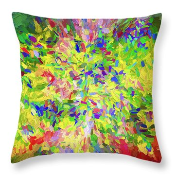 Abstract Artwork Throw Pillow