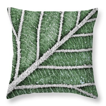 Abstract Leaf Art Throw Pillow