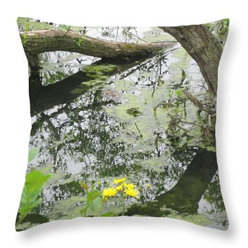 Abstract Nature 2 Throw Pillow
