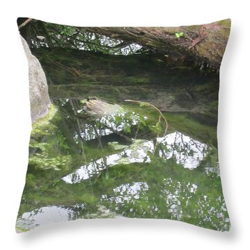 Abstract Nature 3 Throw Pillow