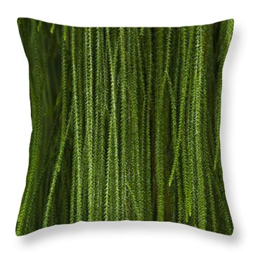Abstract Nature Throw Pillow by Svetlana Sewell