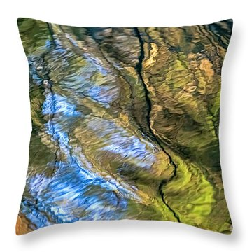 Abstract Of Nature Throw Pillow