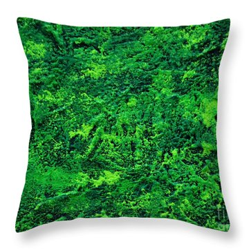 Abstract Pannel Green Throw Pillow by P Dwain Morris