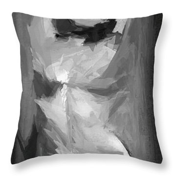 Abstract Series IIi Throw Pillow