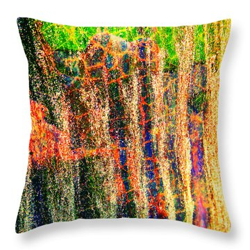 Throw Pillow featuring the photograph Abstract Vibe 2 by Laurie Tsemak