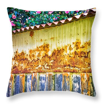 Abstract Weathered Metal Cabin Detail Throw Pillow by Silvia Ganora