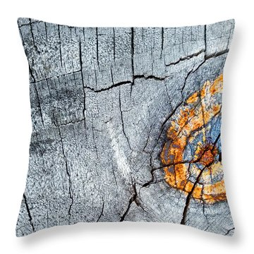 Abstract Woodgrain Upclose 6 Throw Pillow