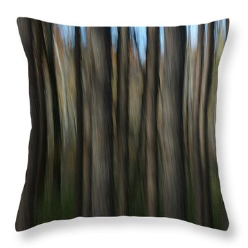 Abstract Woods Throw Pillow