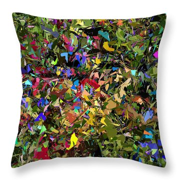Abstraction 2 0211315 Throw Pillow by David Lane