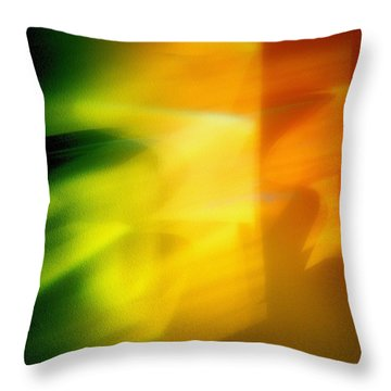 Abstraction Throw Pillow by Tom Druin
