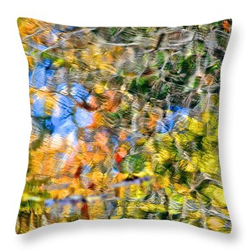 Abstracts Of Nature Throw Pillow by Frozen in Time Fine Art Photography
