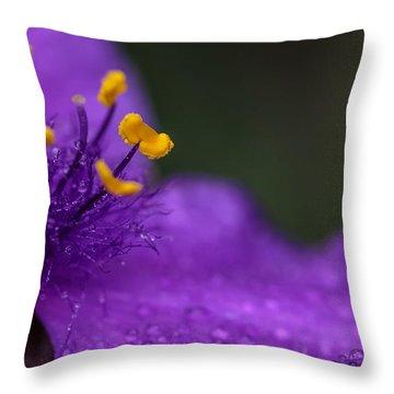 Abundance Throw Pillow by Mary Lou Chmura