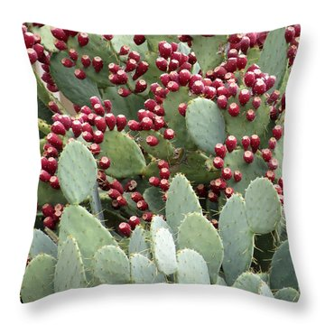 Throw Pillow featuring the photograph Abundance Of Fruit by Laurel Powell