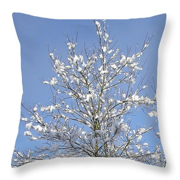 Ash Tree In Winter Throw Pillow