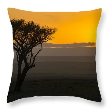 Acacia Sunrise Throw Pillow by Wade Aiken