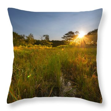 Acadia Marsh Sunrise  Throw Pillow