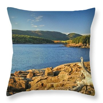 Acadia Otter Cove Throw Pillow by Alana Ranney
